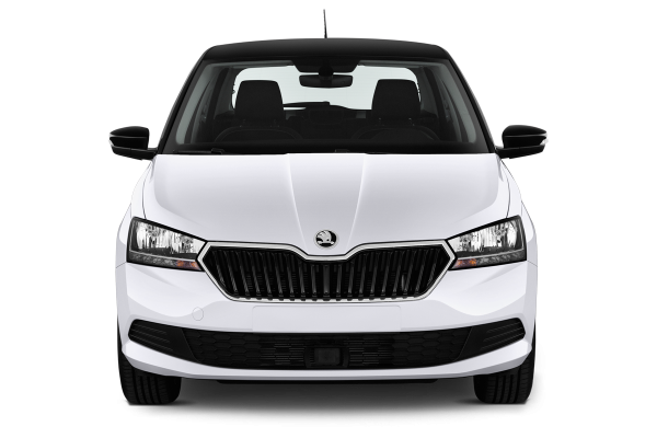 skoda fabia 1 0 tsi 110 ch dsg7 style 5portes neuve moins ch re. Black Bedroom Furniture Sets. Home Design Ideas